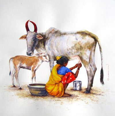 Benefits of Pure Cow Ghee